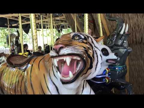 Family Channel: San Diego Zoo Safari Park Wild Animals Park Family Fun Day