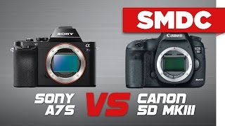 sony a7s vs canon 5dmkiii ungraded