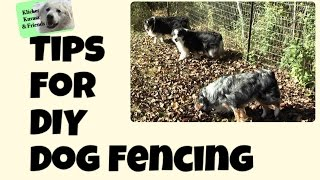 Tips For Diy Dog Fencing
