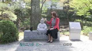 美空ひばりさんの「大川ながし」です。 背景は、2013年の岡崎城桜まつり...