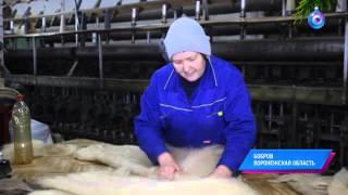 Малые города России: Бобров - родина первого олимпийского чемпиона Николая Панина
