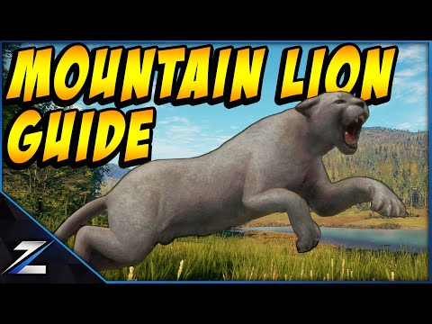 Mountain Lion Hunting Guide Call Of The Wild