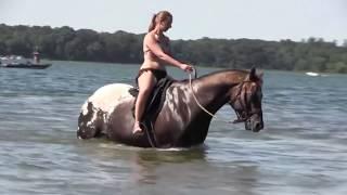 Sexy Girls Bathing a Horse Beautiful Lady Women Washing Cleaning Funny Tricks Smart Farming #JH
