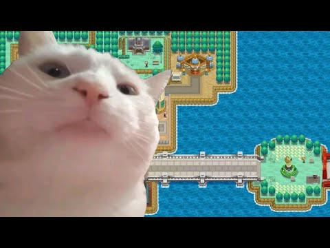 Cat Vibing To Driftveil City Youtube Ye know what time it is. youtube