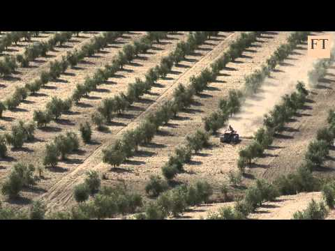 Spain's Olive Farmers Feel The Pressure | FT World