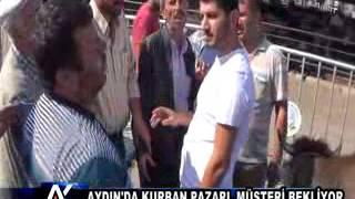 AYTV AYDIN- KURBAN PAZARI MÜŞTERİ BEKLİYOR...