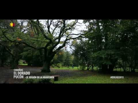 XI Encuentro de EQUIPOS -VOLUNTARIOS Y AMIGOS -DE MISION AFRICA