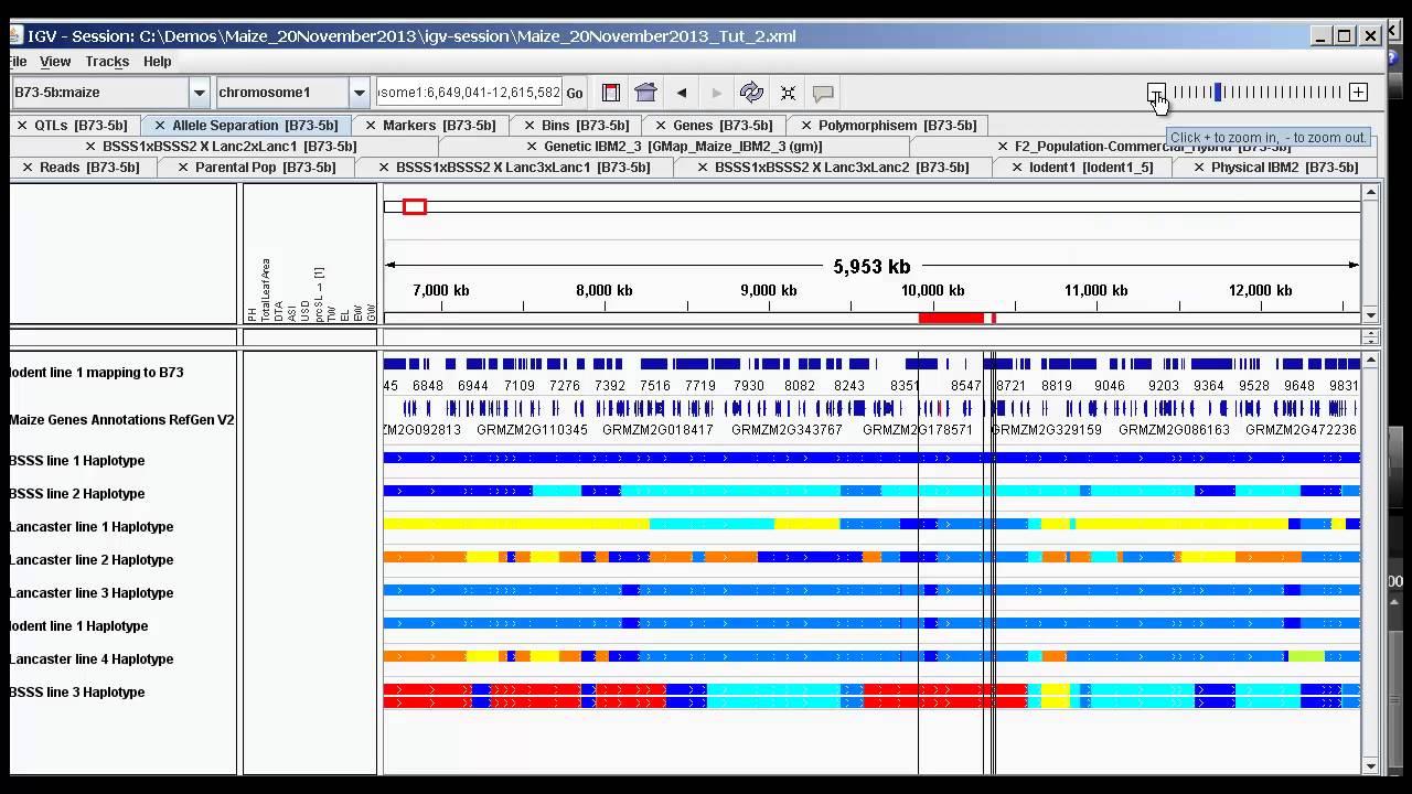 Tutorial Part 2 Haplotyping