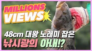 48cm 대왕 노래미 잡은 낚시광의 아내?! [집시맨   다시보기]