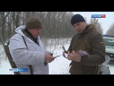 В Саратовской области завершается сезон охоты на пушных зверей