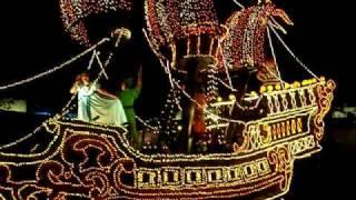 【2009.5.11】東京ディズニーランド パレード ピーターパン