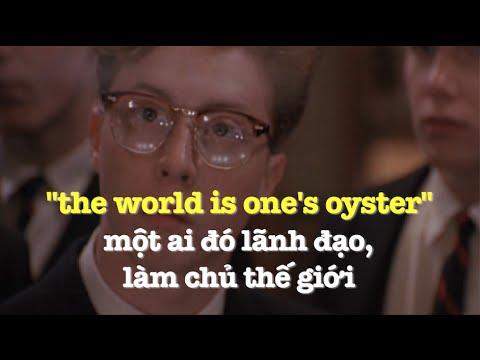 Học tiếng Anh qua phim ảnh: The World Is One