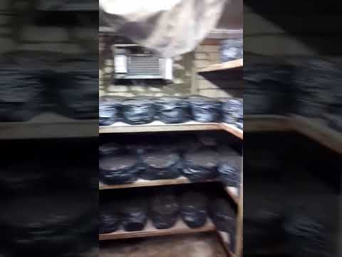 Домашняя грибница (для шампиньонов, вешенок, опят, лисичек