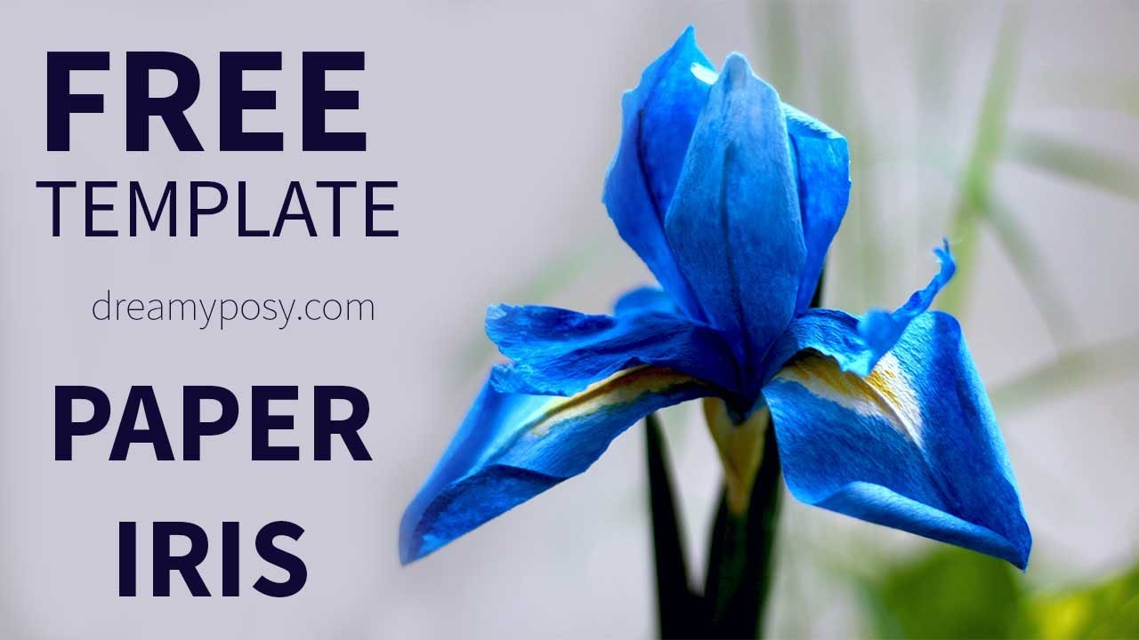 free template  how to make paper iris flower from coffee