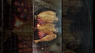 연탄으로 생선굽는 영상