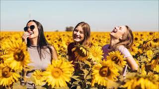 Sunflower Happiness Ringtone   Instrumental Ringtones
