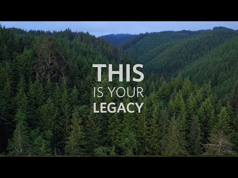 This Is Your Legacy