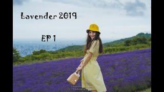 Let it go - ก็ไปดิ เที่ยวญี่ปุ่นด้วยตัวเอง Lavender Trip 2019 EP1