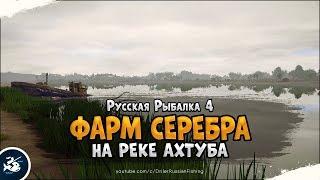 Лещ и Сазан на реке Ахтуба Русская Рыбалка 4