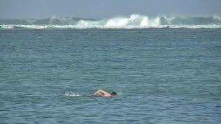 La Réunion: le tourisme en partie affecté par la présence de requins