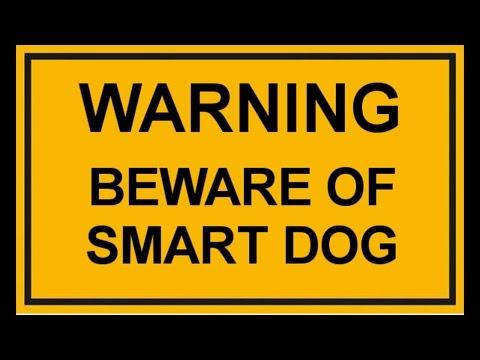 Warning - Beware of smart Dog