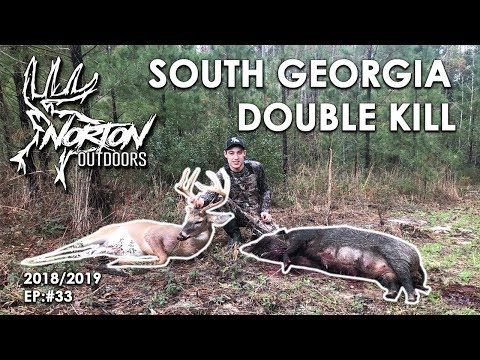 Big South Georgia Hog And 8 Point Buck Killed On The Same Morning! SELF FILMED HUNT