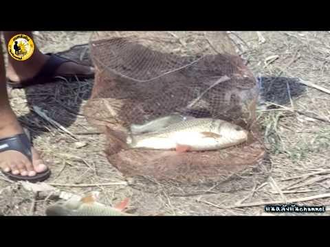 ลุงใหญ่fishing#คนหลังคันchannelตอน 3 ตกปลาหน้าดิน
