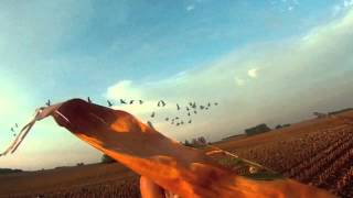 Early Season Goose Hunting Opener 12