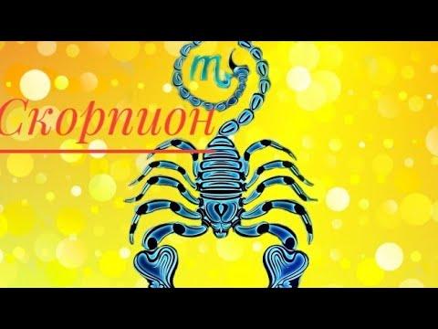 СКОРПИОН гороскоп с 15 февраля по 21 февраля💗Скорпион гороскоп на неделю💗скорпион на сегодня💗