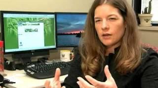 Identifying Rice Pests