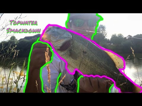 DON'T BUY THIS FISHING LURE (Port Huron Pond Hopping )