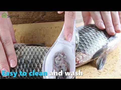 Plastic Fish Scales Graters Scraper Fish Cleaning Scraping Scales Device