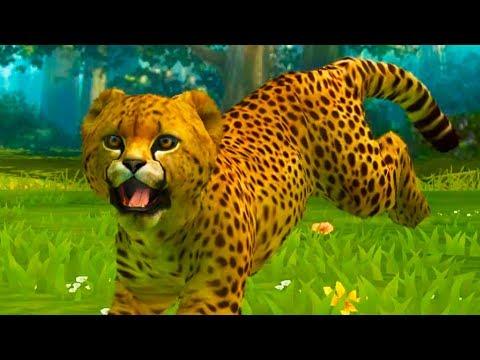 МАЛЕНЬКИЕ ДИКИЕ КОТЯТА в детской игре с Кидом - Гепард и пантера! Мультик игра про милого котика