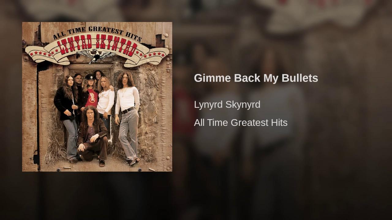 Lynyrd skynyrd gimme back my bullets