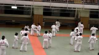 Judo Training - Kodokan