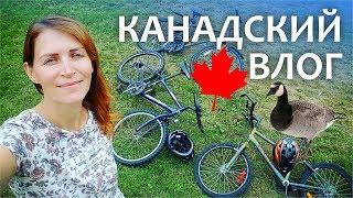 Канадский влог 🍁 23.08.17 Семейный доктор, канадские гуси, что мы едим, прогулка на великах