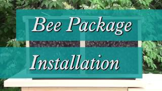 How to Install a Bee Package