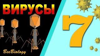 ВИРУСЫ • СТРОЕНИЕ бактериофага, ВИЧ •