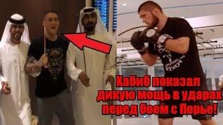 Соперника Хабиба встретили как ГЕРОЯ в Абу-Даби перед боем! / Хабиб показал всю МОЩЬ своих УДАРОВ!