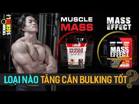 Sự khác biệt giữa Mass Effect và Muscle Mass Gainer - Loại nào sẽ tăng cân tăng cơ tốt hơn?