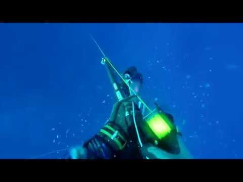 Spearfishing Kooks And Funny Fails