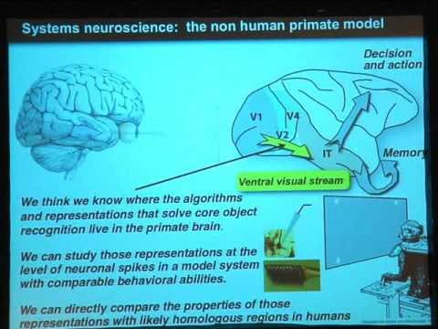 Mechanisms Underlying Visual Object Recognition: Humans vs. Neurons vs. Machines