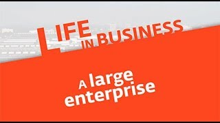 Life in business (6): a large company