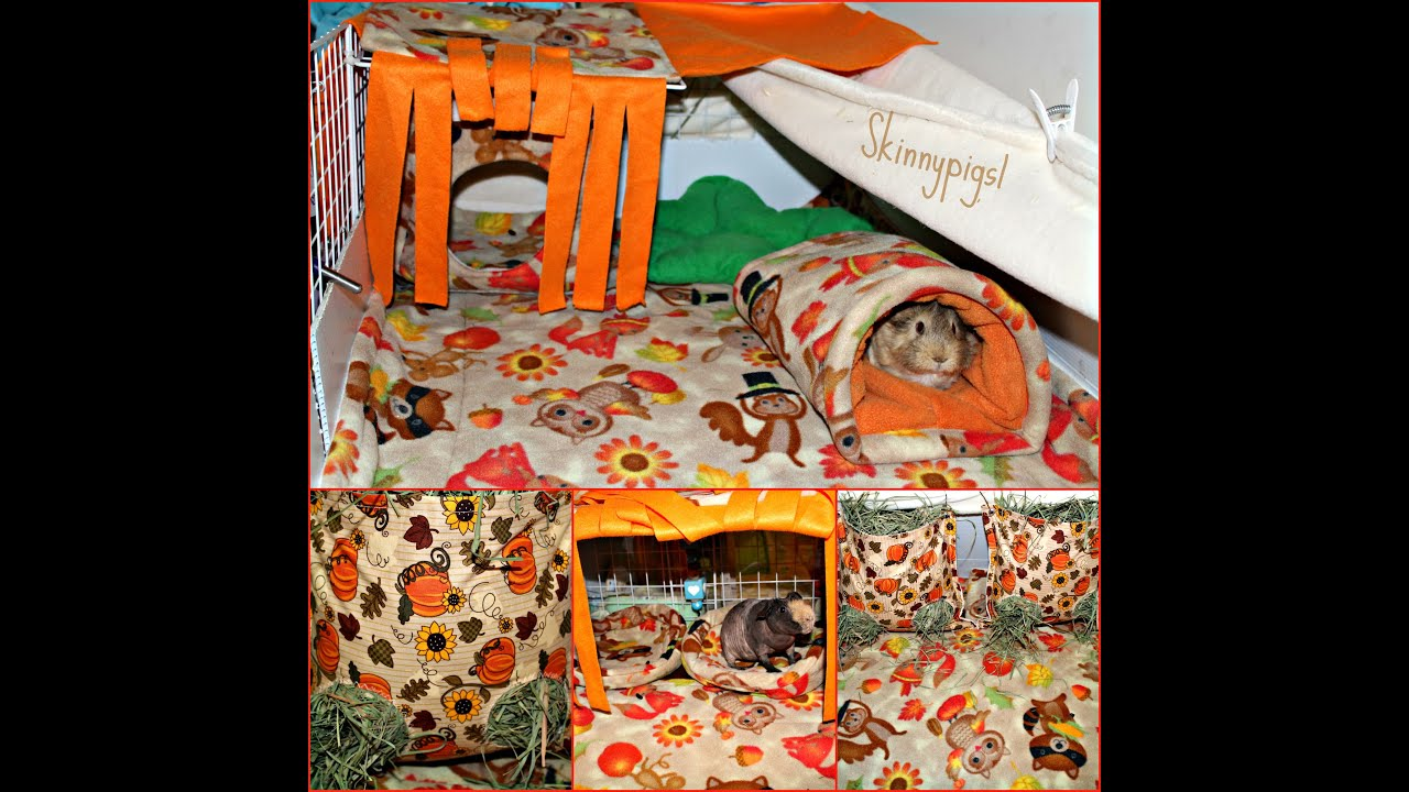 Fall c c cage theme for guinea pigs new hay bags youtube for Where to get c c cages