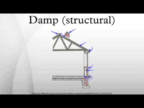 Damp (structural)