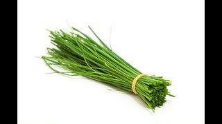 Chives vs Green Onions