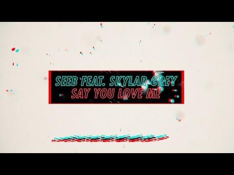 Seeb X Skylar Grey - Say You Love Me #NiceToMeetYou (Official Lyric Video)