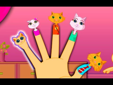 Thumbnail: The Finger Family Cat Family Nursery Rhyme | Kids Animation Rhymes Songs
