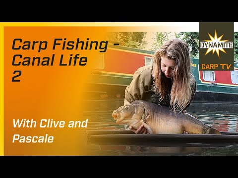 VIDEO* Canal Life 2 - Carp Fishing with Clive and Pascale ...