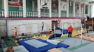 Соревнования спортивная гимнастика  3 разряд Арефьев Егор(1)